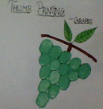 Grapes- thumbprinting
